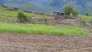 Aree dedicate alle coltivazioni