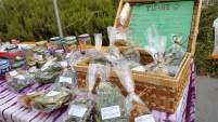 Castro - Agricoltura Sostenibile Alpina Semi di Resistenza - Tellin Camuno 17