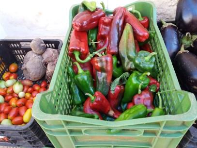 mercato agricolo diffuso di Mola di Bari - peperoni