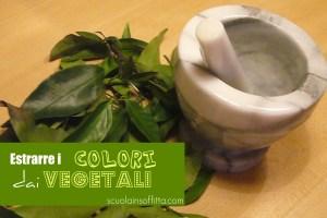 estrarre i colori dai vegetali
