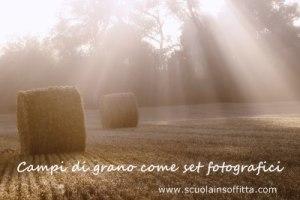 fotografare i bambini sui campi di grano