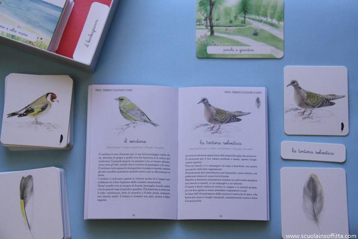cofanetto montessori uccelli