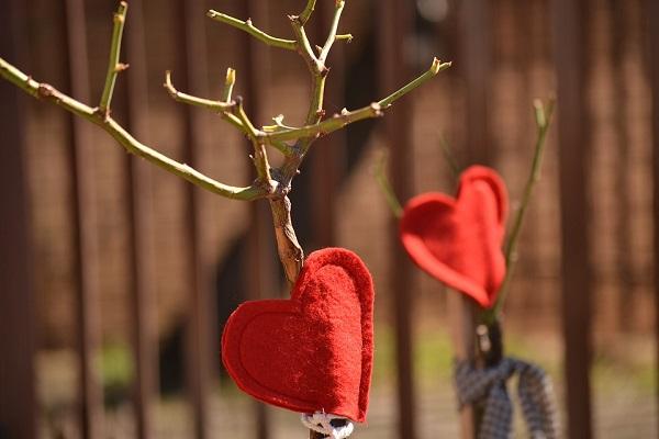 cena romantica idee