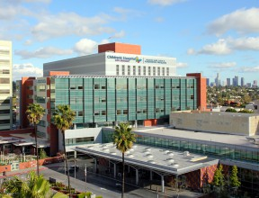 Children's Hospital Los Angeles received an $11 million gift from legendary film director Billy Wilder and his wife, Audrey. The couple will have two new endowments named after them: The Billy and Audrey Wilder Endowed Chair in Neurosurgery and the Billy and Audrey Wilder Endowment in Neurosurgery, a hospital clinical care program under the stewardship of Chief of Medical Staff Mark Krieger, the head of the hospital's Neurosurgery division.