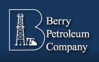 berry-logo