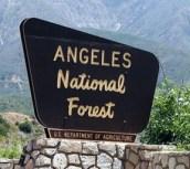 angelesnationalforestsign