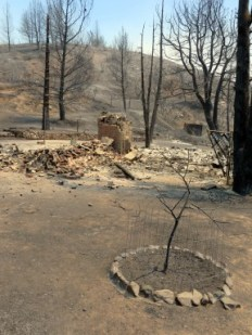 Site of a home that burned down Saturday night on Newview Road in Lake Hughes.