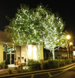 holidaylights2012