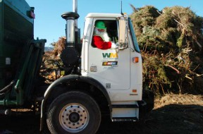 Waste Management Offers Christmas Tree Recycling Until Jan. 11