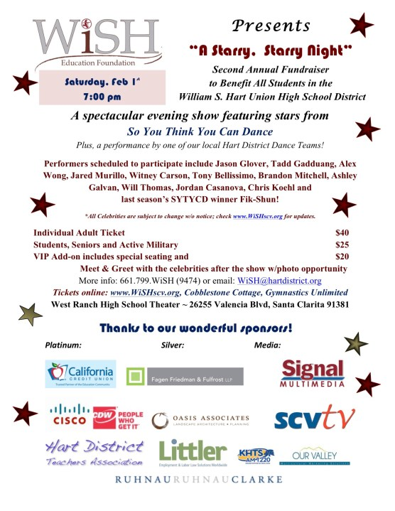 Starry  flier 2014 - sponsors
