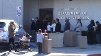 DMV and Line