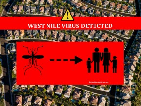 wnv_WestNileVirusDetected