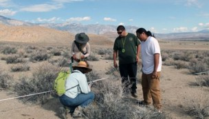 CSUN botany professor Paula Schiffman, left, demonstrates how to take vegetation samples from Owens Valley to students. Photo provided by Kim Kirner/CSUN