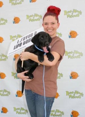 Bow-Wows & Meows Pet Fair