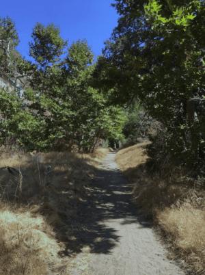 Placerita Canyon Nature Center
