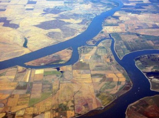 The Sacramento-San Joaquin River Delta viewed from above Sherman Island, with the Sacramento River above and San Joaquin River below. | Photo: WorldIslandInfo.com/Wikipedia.