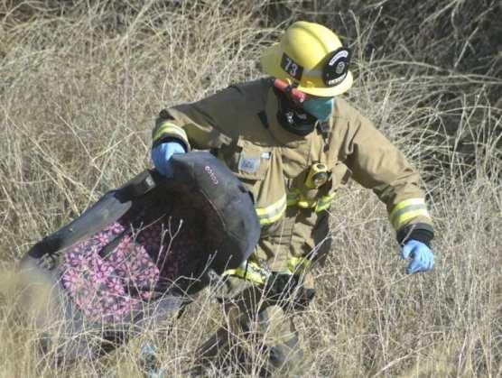 Firefighter Retrieves Car Seat