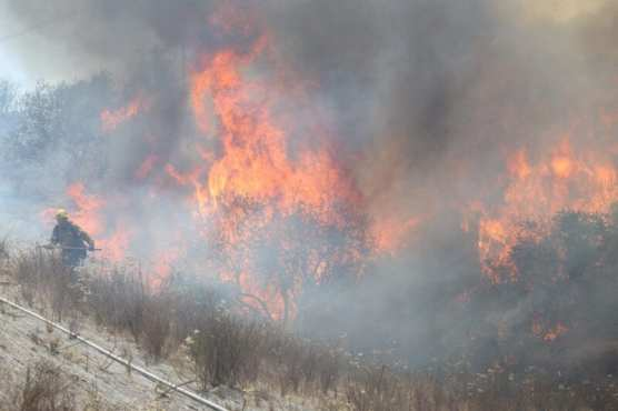 Needham Fire