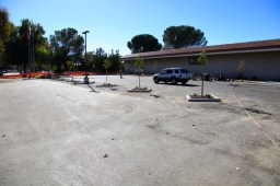 Valencia Library Update - 03