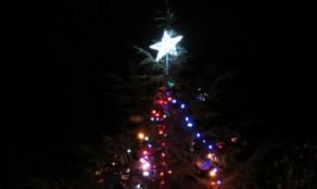 TreeLighting_120713yb