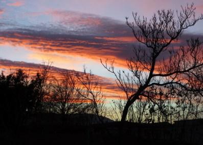 sunset012814c