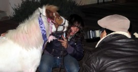 Cherry the miniature horse, with Nancy Degan