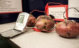 Electric Potatoes