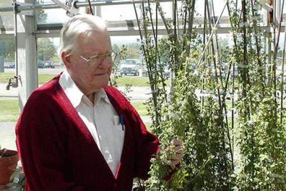 Nueva alfalfa que combate las plagas y aumenta el rendimiento para ayudar a los agricultores