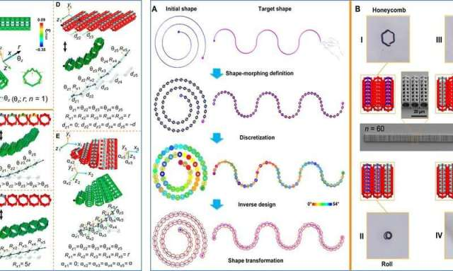 Four-dimensional micro-building blocks