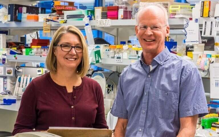 Engineered T cells for type 1 diabetes move closer to clinic