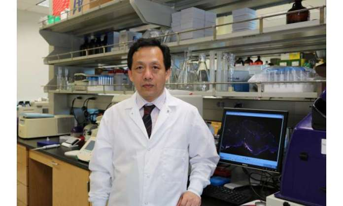 New study on development of Parkinson's disease is 'on the nose'