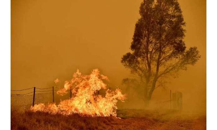 Os cientistas dizem que o aumento da temperatura verá incêndios ocorrendo com mais frequência