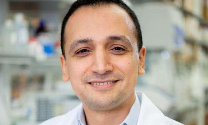 Sugar-based signature identifies T cells where HIV hides despite antiretroviral therapy