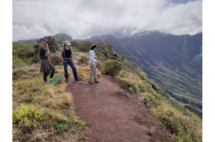 Researchers find nonnative species in Oahu play greater role in seed dispersal