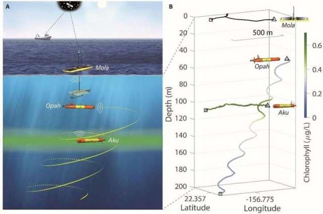Emmener le laboratoire dans l'océan: une flotte de robots suit et surveille les communautés microbiennes