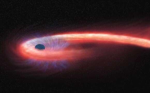 खगोलविदों ने सिल्हूट स्पेगेटीफाइड स्टार का पहला संकेत देखा
