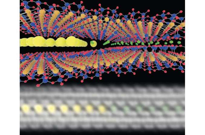 Atomic snapshots show fast ion migration in ultra-thin clays