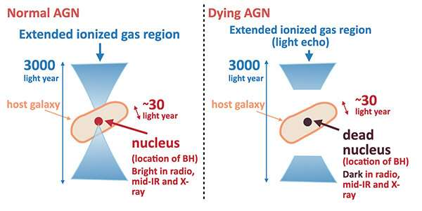Discovery of a dying supermassive black hole via a 3000-year-long light echo