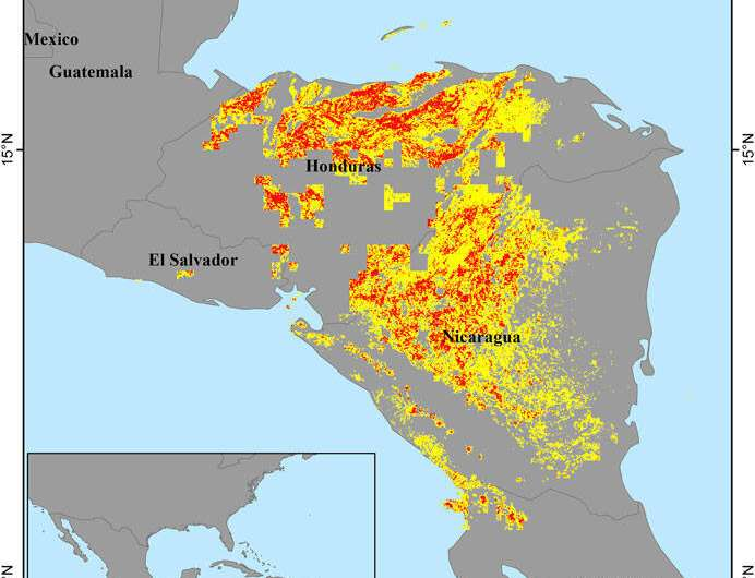 Machine learning model doubles accuracy of global landslide 'nowcasts'