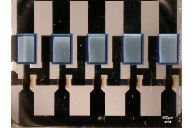 Organic electronics possibly soon to enter the GHz-regime