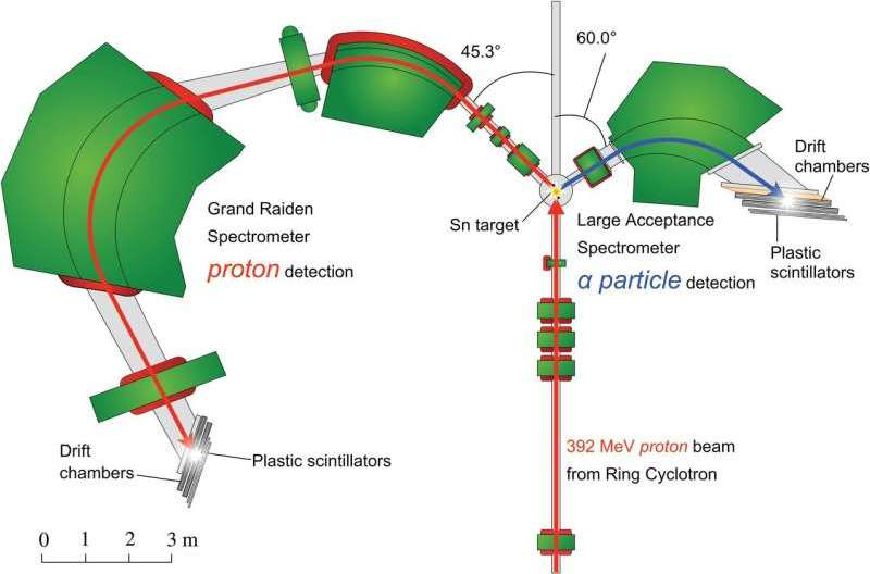 """Precise measurements of cluster formation in outer neutron """"skin"""" of a range of tin isotopes"""