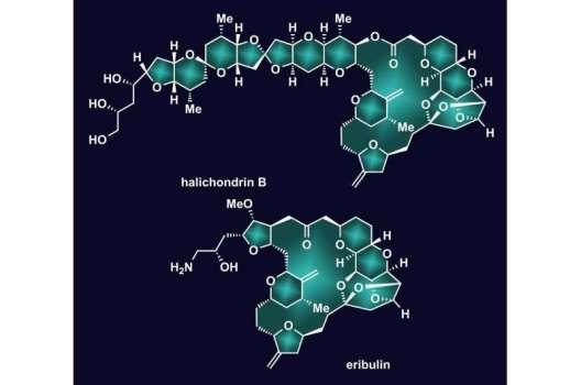 Reversal speeds creation of important molecule