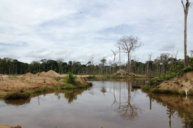 UW researchers investigate mining-related deforestation in the Amazon