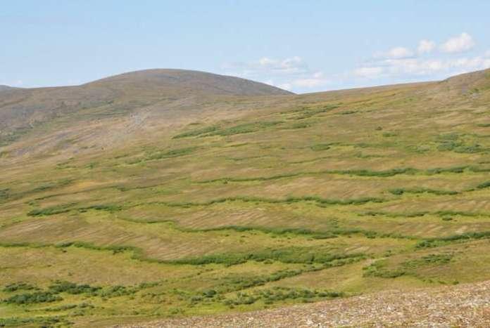 आर्कटिक की मिट्टी फिसलकर फिसलती क्यों जा सकती है