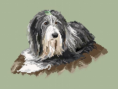 https://i0.wp.com/sd-5.archive-host.com/membres/images/164353825412355948/bearded_collie_2_wordpress.JPG