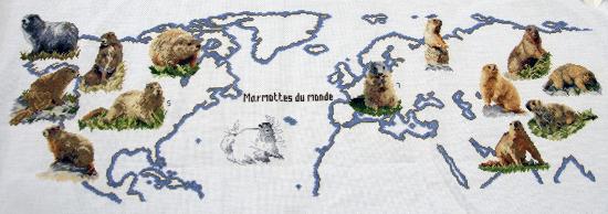 https://i0.wp.com/sd-5.archive-host.com/membres/images/164353825412355948/marmottes_1712.JPG
