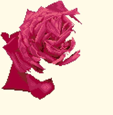 https://i0.wp.com/sd-5.archive-host.com/membres/images/164353825412355948/rose_1801.jpg