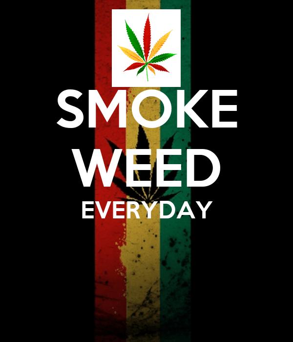 Girl Tshirts Hd Wallpaper Smoke Weed Everyday Poster Nuno Keep Calm O Matic