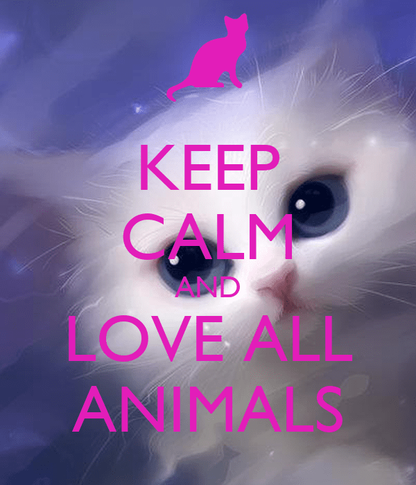 Keep Calm And Love All Animals