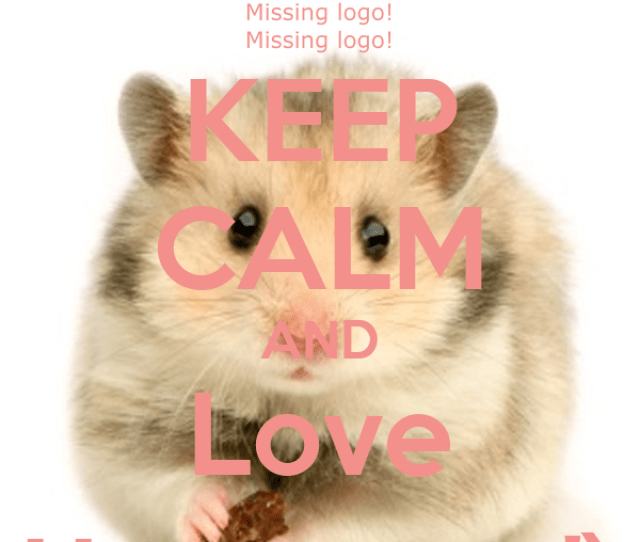 Keep Calm And Love Hamster X